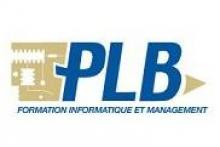 PLB Consultant