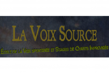 Association La Voix Source