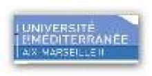 Institut de Mécanique de Marseille