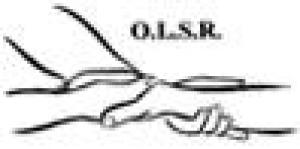 Oser les Soins Relationnels Olsr - Daniel Doisy
