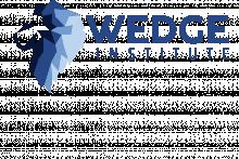 Wedge Institute