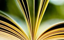 Bachelor Economie Sociale et Solidaire E-Learning