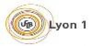 Iut B. Univ. Lyon
